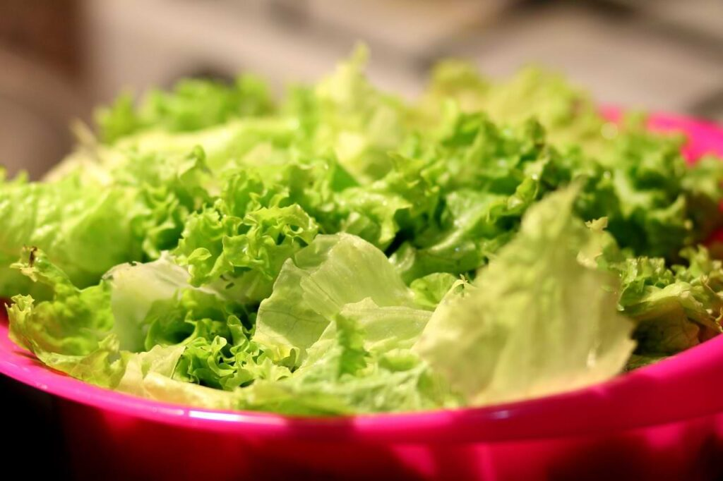 lettuce for tropichop keto bowl